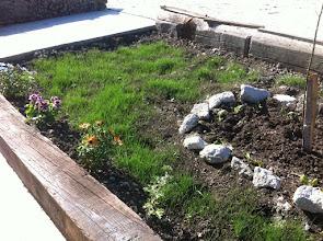 Photo: Hobi bahçem güzelleşiyor...