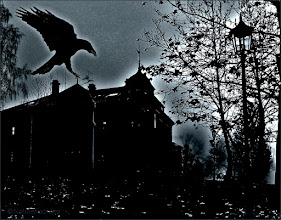 Photo: OLYMPUS DIGLook out, the raven is coming! © NF Photo 161024 http://nfbild2.blogspot.se/2016/10/look-out.html ITAL CAMERA