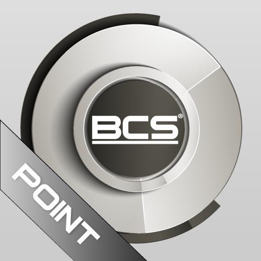 BCS Point Analog