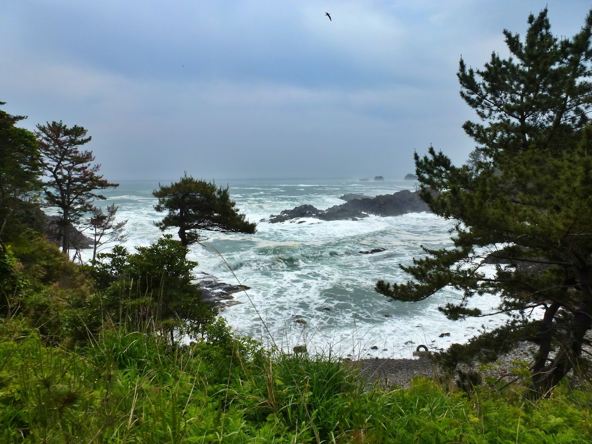 神割崎キャンプ場の風景