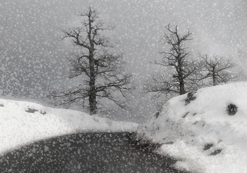 Cade la neve sulle campagne di Marlak