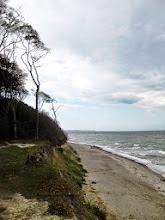 Photo: Gespensterwald, Ostsee strand Germany.