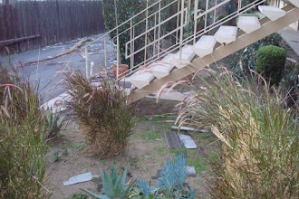Photo: Outside the front door the morning after - plenty of roofing all over the place.