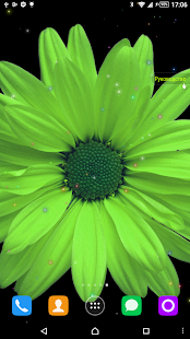 Chamomile live Wallpaper screenshot