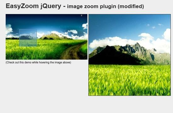Basic and lightweight jQuery Image Zoom Plugin - Easy Zoom | Free jQuery  Plugins