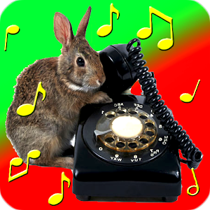 Animal Ringtones and Sounds for PC