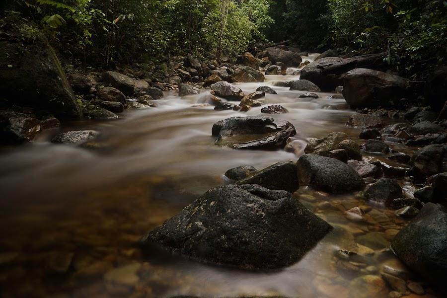 by Cikgu Al - Landscapes Waterscapes
