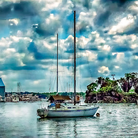 Crystal River Marina by Sandy Friedkin - Transportation Boats ( marina, sail boat, crystal, river, water )