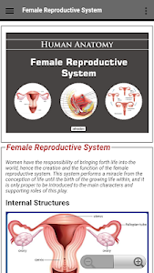 Female Reproductive System 2.0