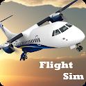 Flight Sim icon