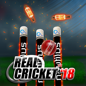Real Cricket™ 18 for PC