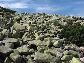 Photo: rumowisko skalne koło Czeskich Kamieni