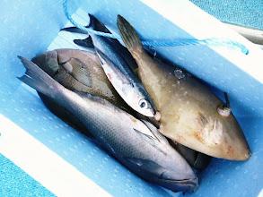 Photo: これもウチダさんの獲物。