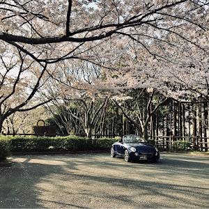 コペン L880K 2nd アニバーサリーのカスタム事例画像 yoshikunnさんの2020年04月04日06:32の投稿