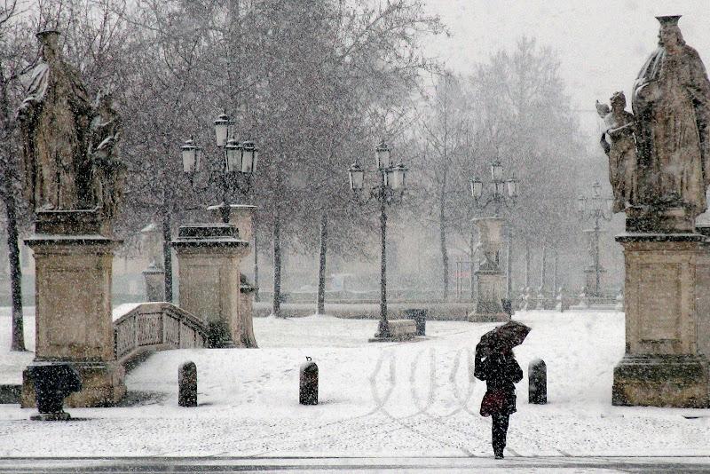 Neve in Prato della valle di Zaporogo
