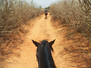 Photo: Horseback riding at Toubab Dialaw