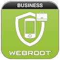 Business Security icon
