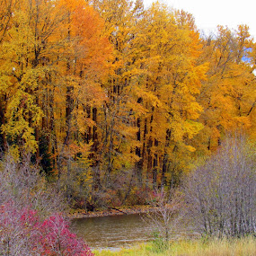 A RAY OF COLORS by Cynthia Dodd - Novices Only Landscapes ( clouds, mountain, nature, colorful, colors, outdoors, trees, river )