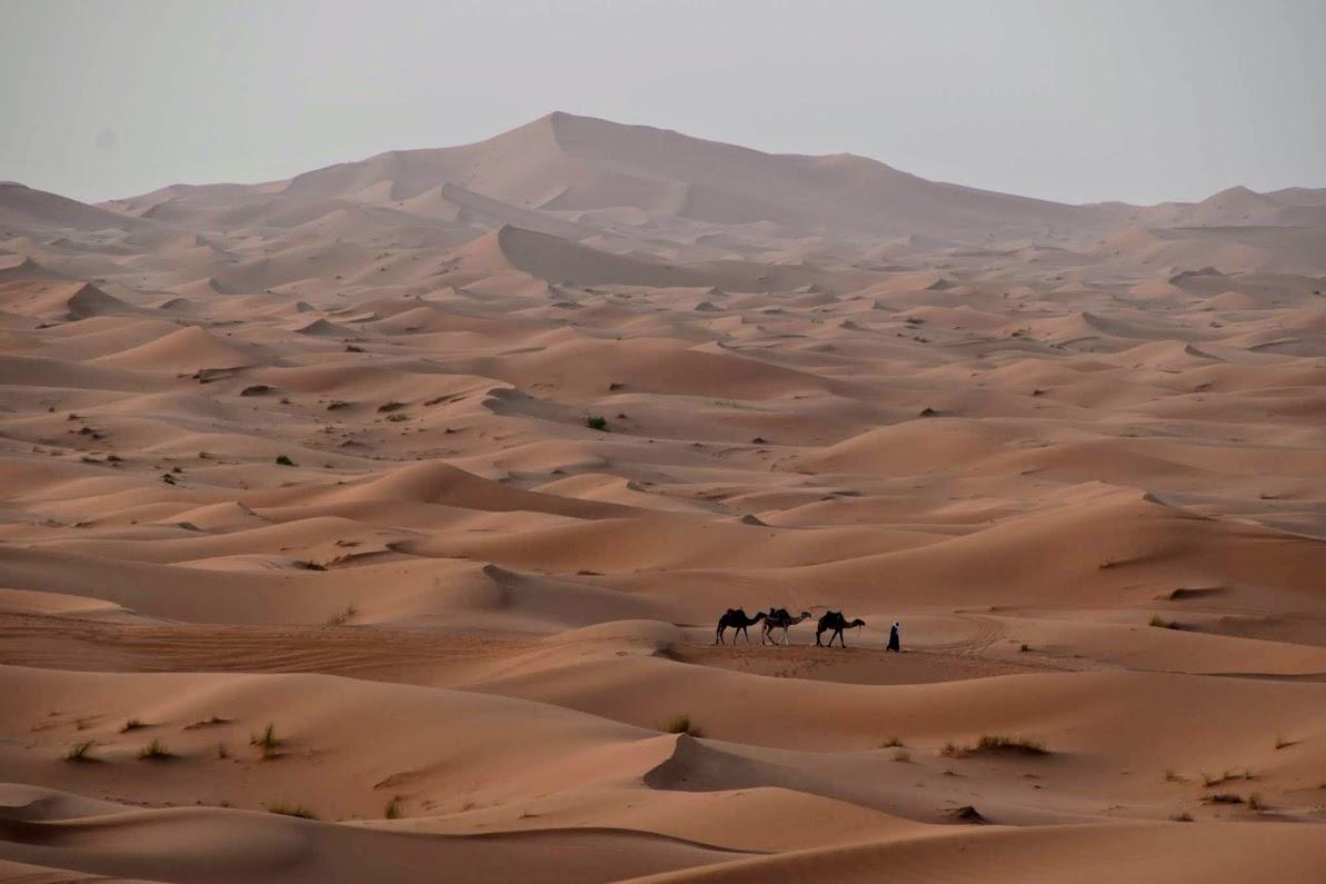 desierto de erg chebbi marruecos