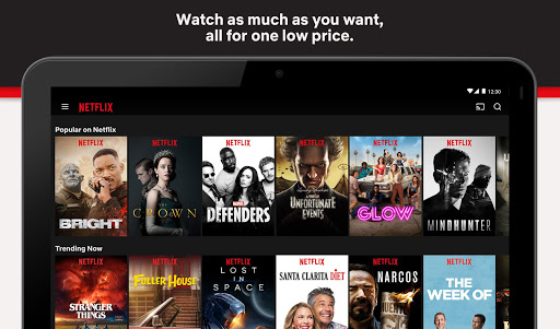 Netflix screenshot 5