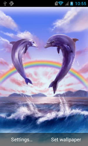 Jumping dolphins Live WP