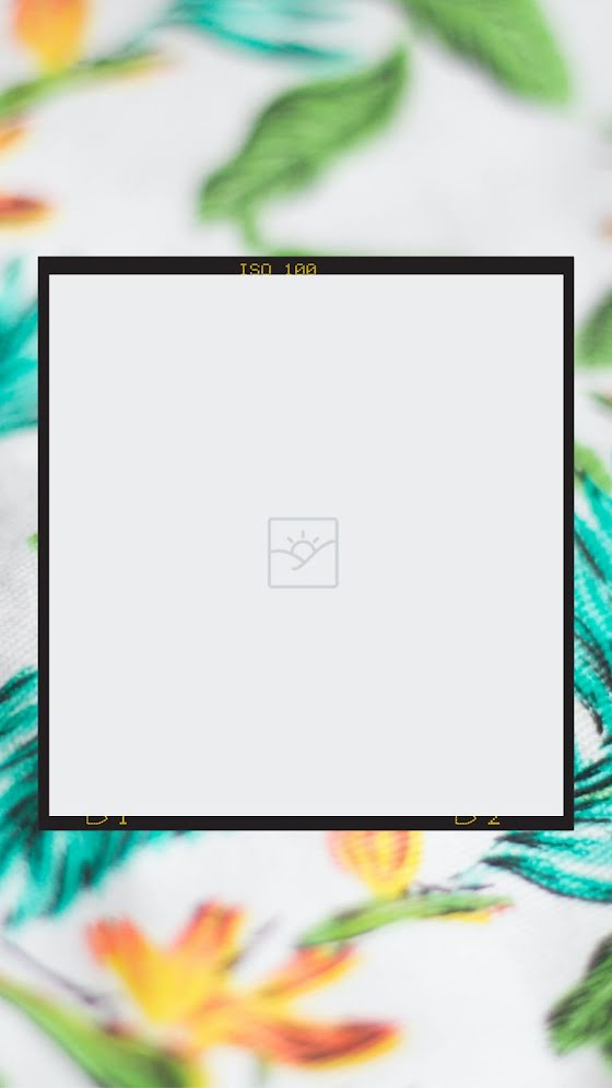 Blank Floral Frame 02 - Facebook Story Template