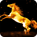 Horse Fire Live Wallpaper icon