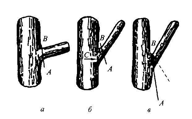 Примеры срезов