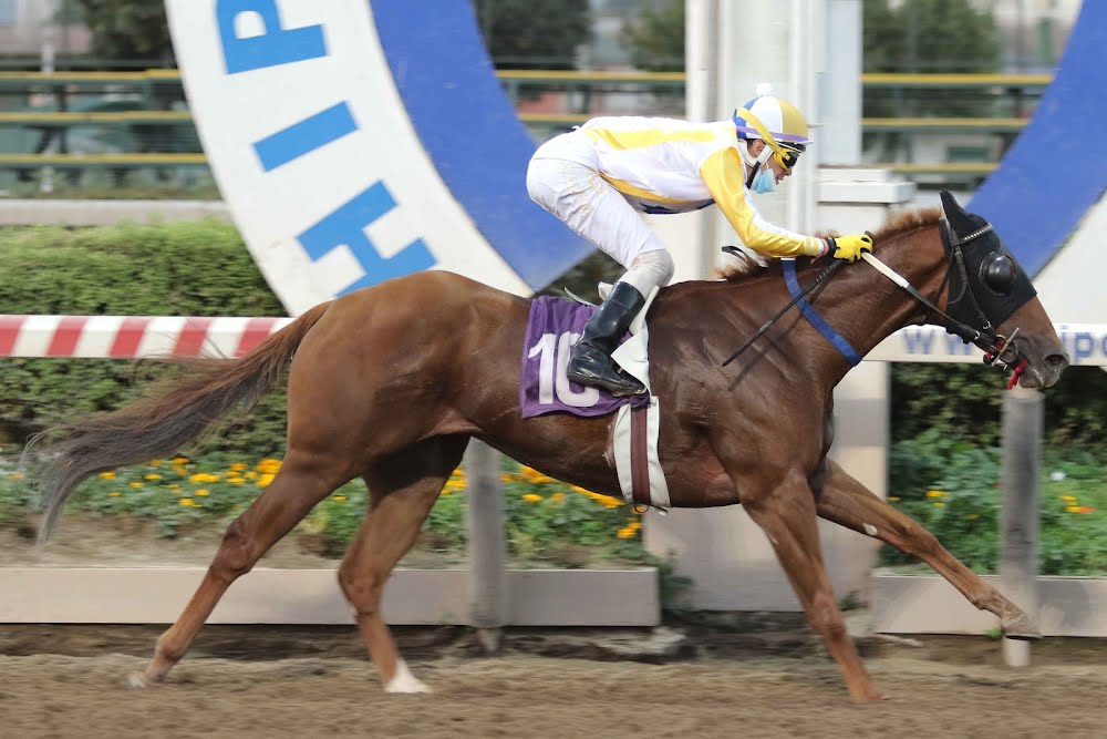 Wild Magic (Morning Raider) se impuso en Handicap (1000m-Arena-HCH).