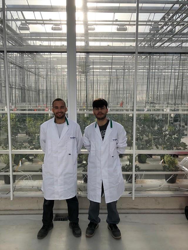 Víctor Romero y Jesús Manuel Escobar trabajando en Holanda.