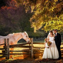 by Slava Slavik - Wedding Reception ( neverland farms, slava slavik )
