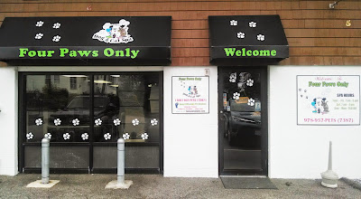 Photo: Four Paws Only in Dracut, MA proudly displaying their BBB Accreditation