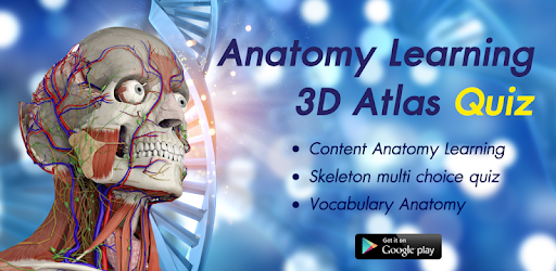 Anatomy Learning 3d Atlas Quiz Apps On Google Play