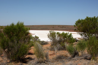 Photo: Year 2 Day 221 - Plenty of Salt Lakes