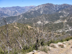 Photo: View northwest toward my descending ridge route. Evidence of the 2002 Williams Fire abounds. Iron Mt (8007') stand in the middle.