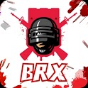 Grass removal and Ipad model- BRX icon
