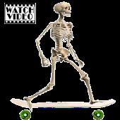 Skeleton Ragdoll, Skater