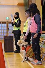 Photo: 盲導犬についての話でお手伝いする、オオゴショとマーティとデイツ