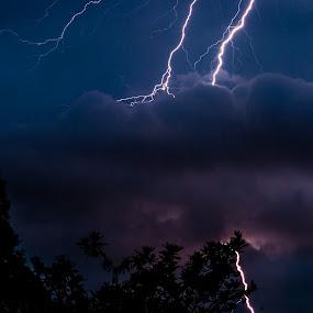 Local Lightening by Mark Luyt - Landscapes Weather ( lightening, storm, dark sky, clouds, thunder )