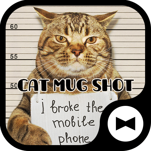 Wallpaper Cat Mug Shot Theme Icon