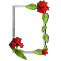 Floral photo Frames icon