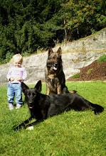 Photo: Ylva, Varg og Vilma koser seg i hagen