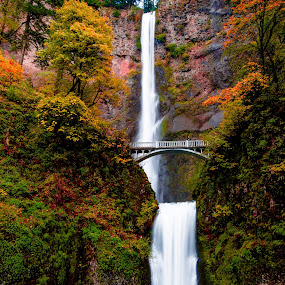 Multnomah Falls in Autumn by Penny Miller - Landscapes Waterscapes ( waterscape, multnomah falls, beautiful waterfall, waterfall, oregon waterfall, multnohmah falls in autumn, portland oregon area waterfalls, waterscape in autumn, national waterfalls,  )