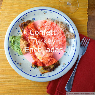 Confetti Turkey Enchiladas with Slow Roasted Tomato Sauce