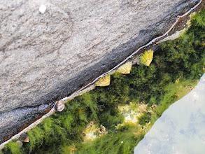 Photo: wybrzeże w A na Lofotach