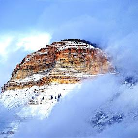 Floating Mountain* by Rob Bradshaw - Landscapes Mountains & Hills ( foggy, mountains, mountain, parachute, mt. logan, colorado, landscape, fog )