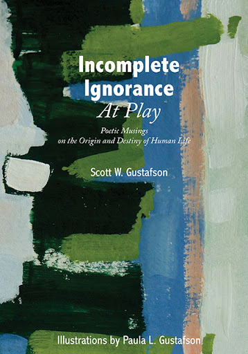 Incomplete Ignorance at Play cover
