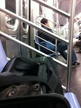 Photo: Malia riding the NYC subways