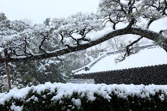Photo: 五領田