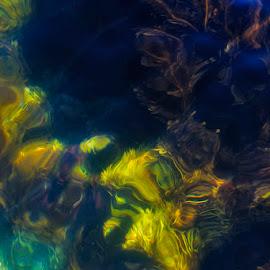 Painted seaweed by Chris Seaton - Nature Up Close Water ( water, abstract, kelp, seaweed, ocean, painting )